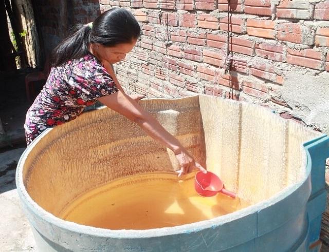 Tựu chung lại nước mặn khiến cho mọi hoạt động cần dùng đến nước bị đình trệ.