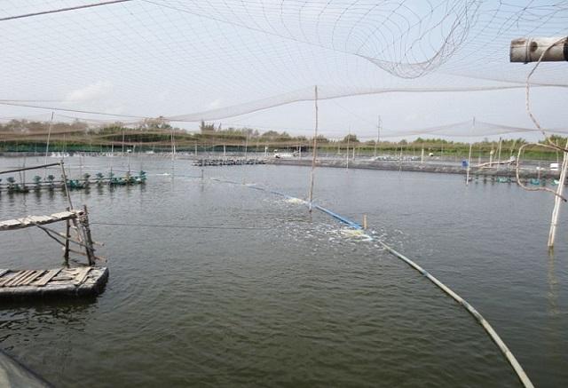 Mức độ ô nhiễm của nguồn nước thải này không hề nhỏ