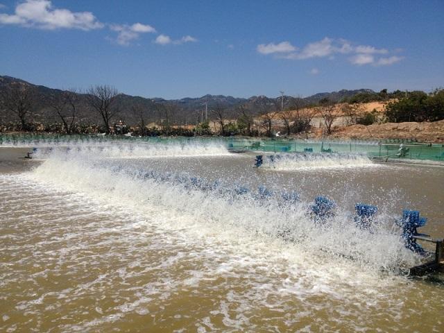 nước thải của ngành nuôi trồng thủy sản