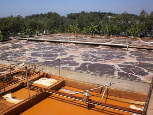 thiết kế, thi công lắp ráp xử lý nước thải rỉ rác
